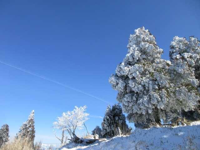 IMG0046JPG雪景色