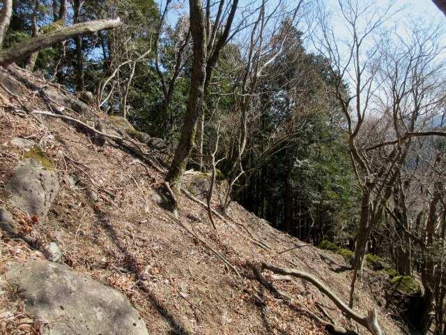 IMG0043JPG上塚山の激登り
