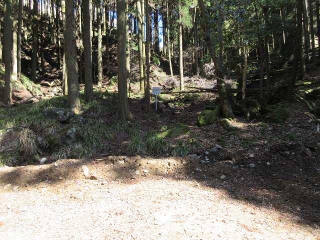 IMG0055JPG林道幹線に下りてきた