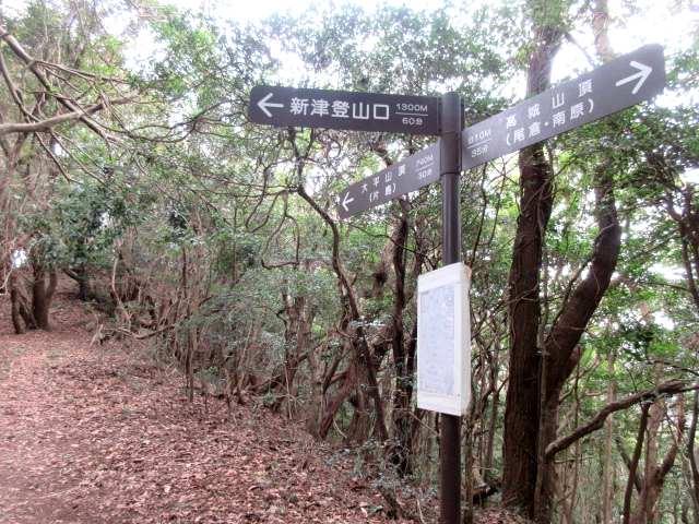 IMG0024JPG新津登山口分かれ
