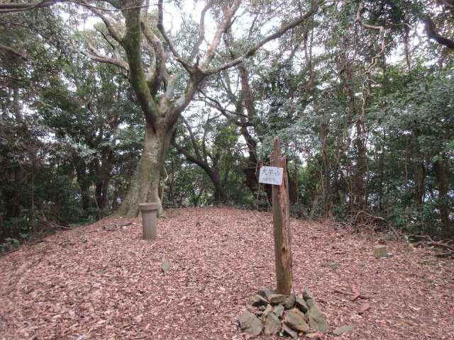 IMG0085JPG大平山です