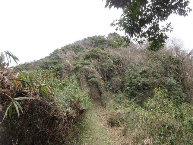 IMG0087JPG大久保山を見る