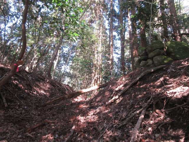 IMG0027JPG石山峠