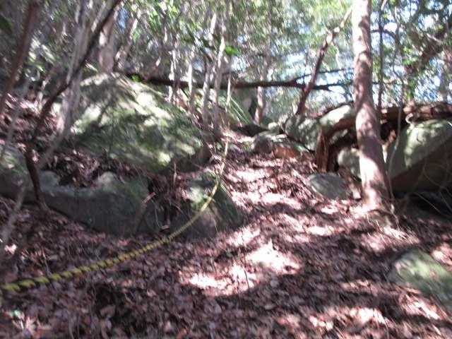 IMG0030JPG鬼落山への急登