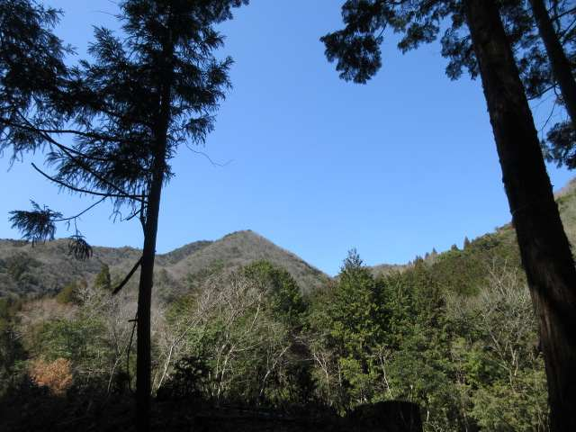IMG0065JPG林道から鬼落山