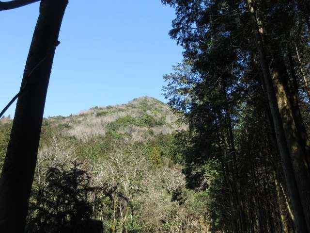 IMG0066JPG林道から石山