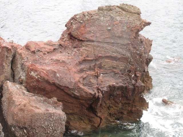 IMG0030JPG火山石