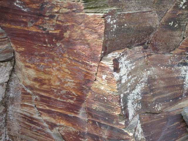 IMG0048JPG金溶岩