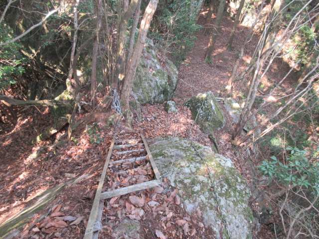 IMG0023JPG岩を梯子で