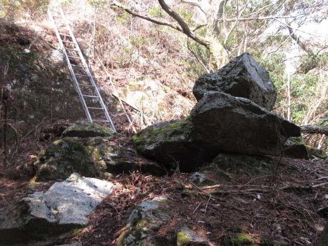 IMG_0030JPG長い梯子