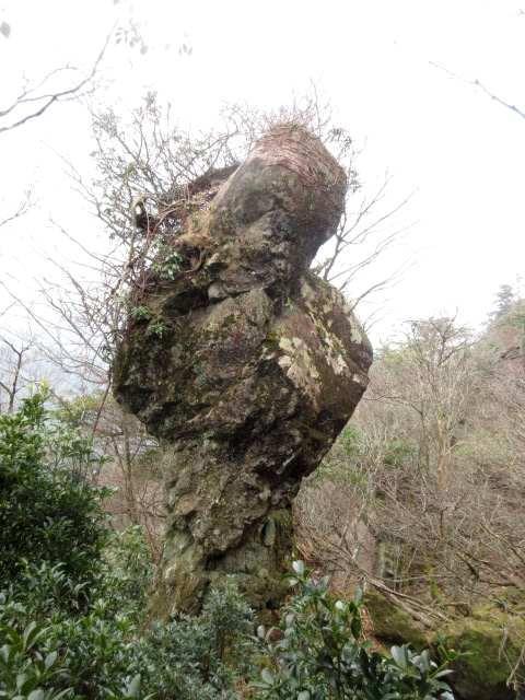 IMG0018JPG貝巻き岩