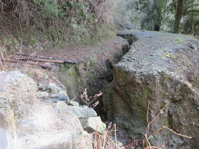 IMG0012JPG亀裂の林道