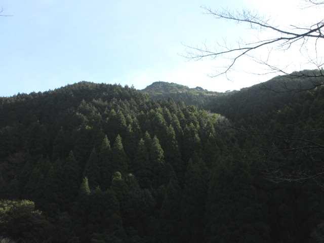 IMG0016JPG頭を出した江川岳