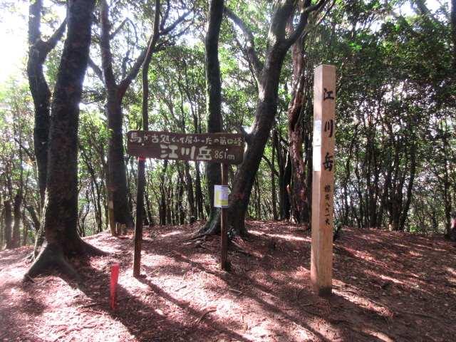 IMG0031JPG江川岳山頂