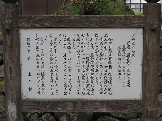 051-2t.jpg