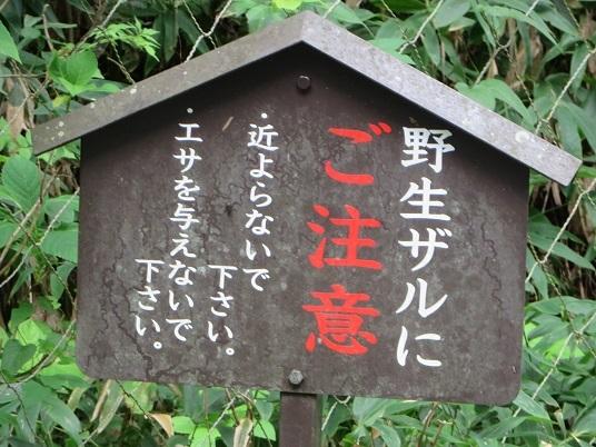 2019、8,25比叡山 030-4e