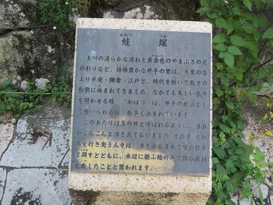 宇治田原町2019,10 004-1h