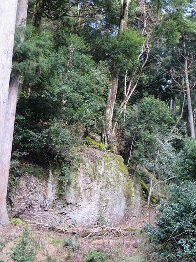 笠形山のクマザサの水 053-1r