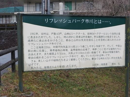 笠形山のクマザサの水 009-1j