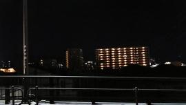 20190907忠ちゃん牧場003