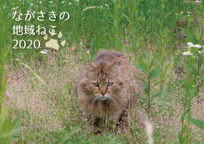 karennda-0005.jpg