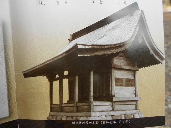 DSCN7165 - コピー