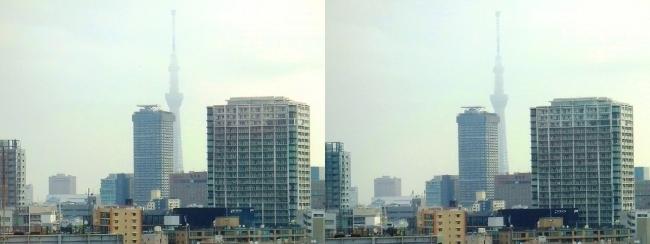 ホテル京阪築地銀座グランデ 最上階スーペリアフロア朝景眺望(平行法)