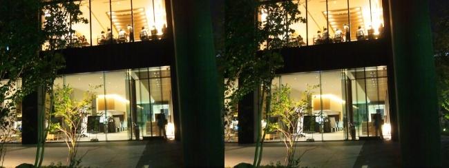 ホテル京阪築地銀座グランデ 夜の外観(交差法)