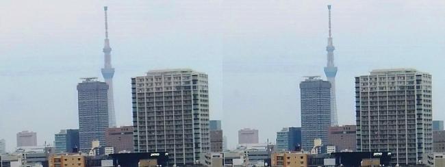 ホテル京阪築地銀座グランデ 最上階スーペリアフロア眺望④(交差法)