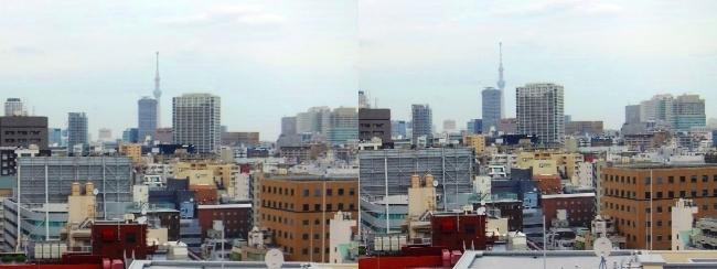 ホテル京阪築地銀座グランデ 最上階スーペリアフロア眺望②(平行法)