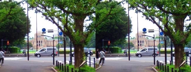 聖徳記念絵画館(平行法)