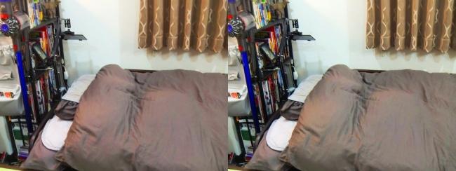 ベッドルーム②(平行法)