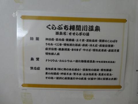 P1110120.jpg