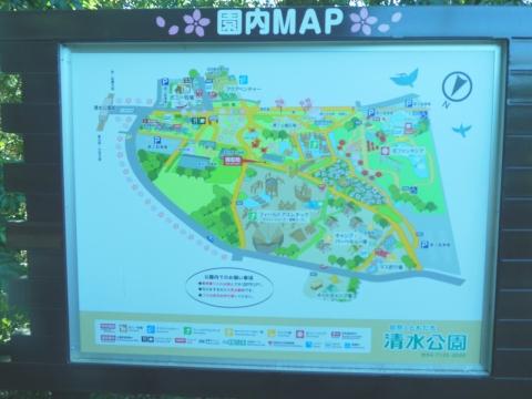 P1110shimizu552.jpg