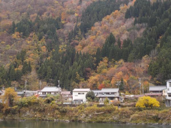 長良川沿いの秋