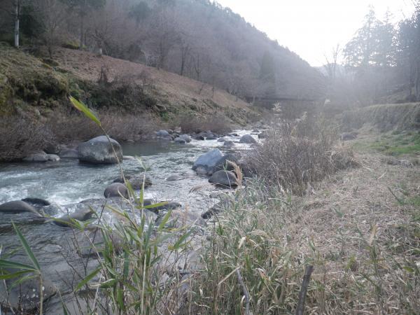 21日の栗巣川1