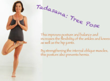 tree-pose-yoga-tips-220x162.jpg