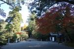 石上神宮・本殿05