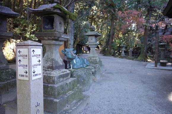 石上神宮・大イチョウと山之辺の道10