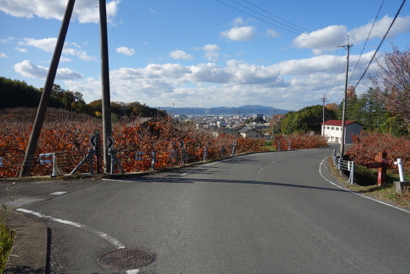 山之辺の道03-05