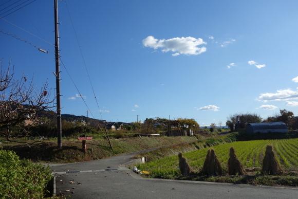 山之辺の道03-25