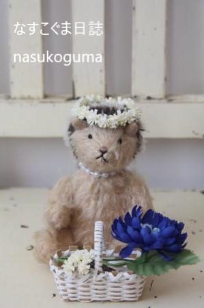 花冠ハリネズミ