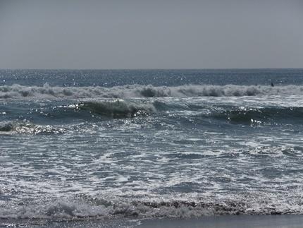 仙台新港・向洋海浜公園