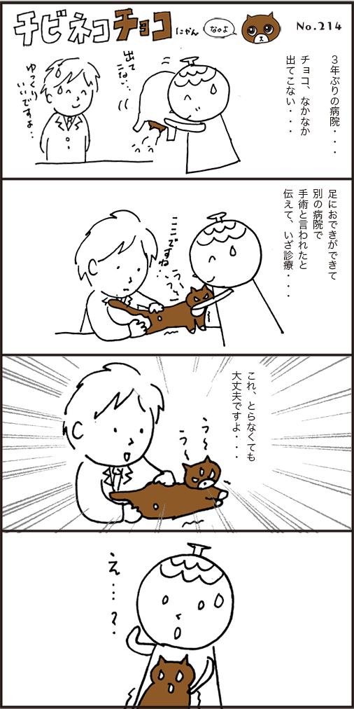 チョコのおできセカンドオピニオンの獣医さんの診断