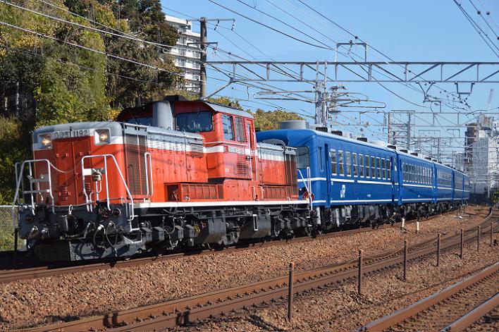 DSC_6375-3