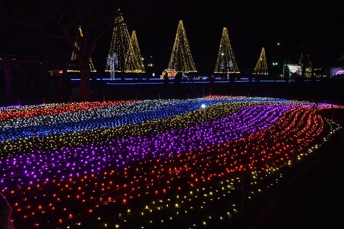 DSC_6430 191228 木曽三川公園