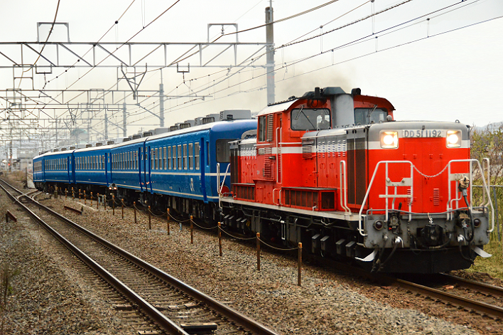 DSC_6454-4