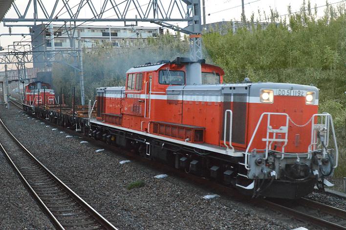 DSC_0124-2