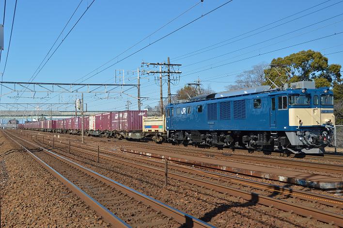 DSC_6562-2-1.png