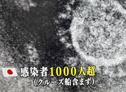 TBSサンデーモーニング「日本の感染者数1000人超!(クルーズ船含まず)」(画像)